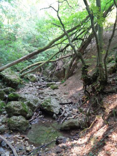 Csender Lili Eszter (8) – Völgyön-hegyen át Dera-szurdok